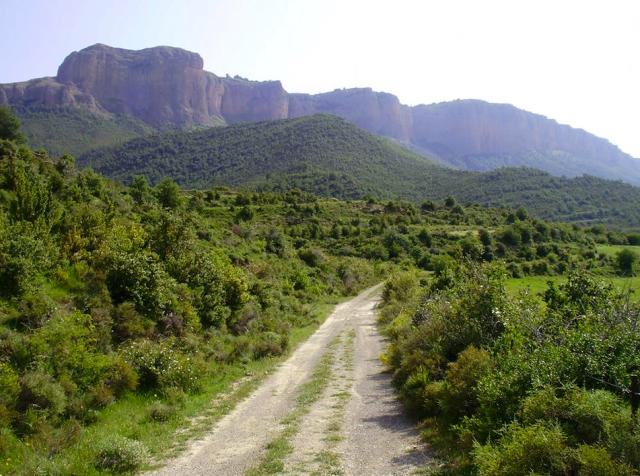 Camino que nos lleva hacia la Sierra de San Juan de la Peña