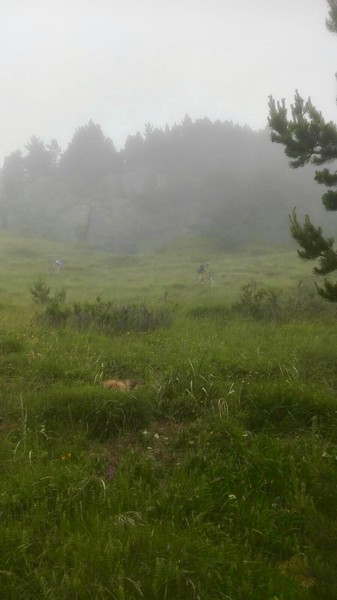Bajada en la niebla